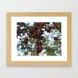 The Berries Framed Art Print
