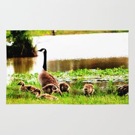 Canada Goose and Goslings Rug