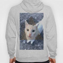 METRIC CAT Hoody