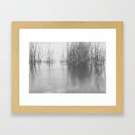 Lake Grass Framed Art Print