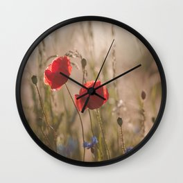 Poppy in sunrise my world Wall Clock