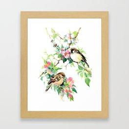 Sparrows and Apple Blossom, spring floral bird art Framed Art Print