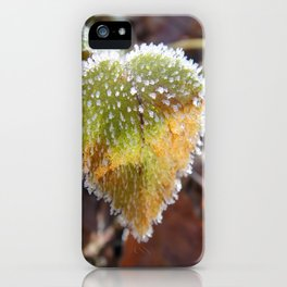 Colorful, heartshaped leaf with white frost iPhone Case