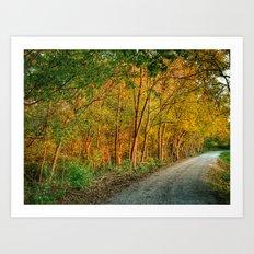 October Walk 3 Art Print