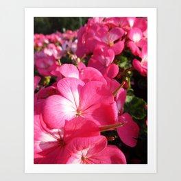 Pinker Than Art Print