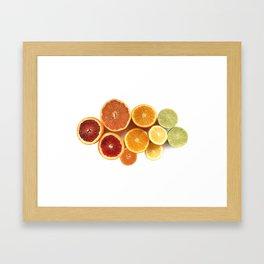 Citrus Rainbow Framed Art Print