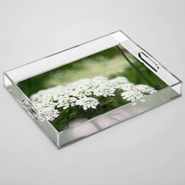 White Queen Ann's Lace Acrylic Tray