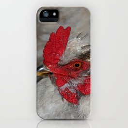 Ameraucana Rooster iPhone Case