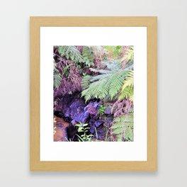Hunua Falls2, NZ Framed Art Print