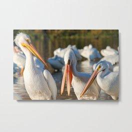 Three Birds Walk Into A Bar Metal Print