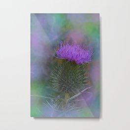 little pleasures of nature -161- Metal Print