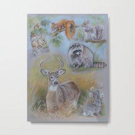 North American Mammals Wildlife Animal collage Pastel drawing Squirrel Raccoon Chipmunk Deer Rabbit Metal Print