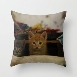 love cat photography Throw Pillow