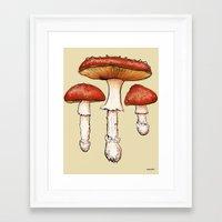 mushrooms Framed Art Prints featuring Mushrooms by CHAR ODEN