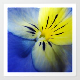 Flower Blue Yellow Art Print