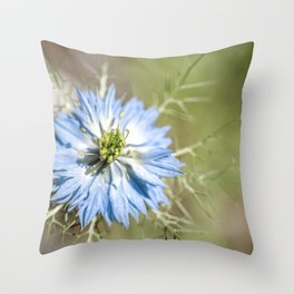 Blue flower close up Nigella love in the mist Throw Pillow