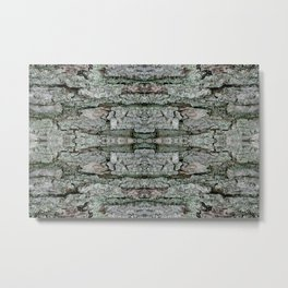 Maple Bark & Lichen - Old Mossy Maple Tree Bark - Natural Patterns Metal Print