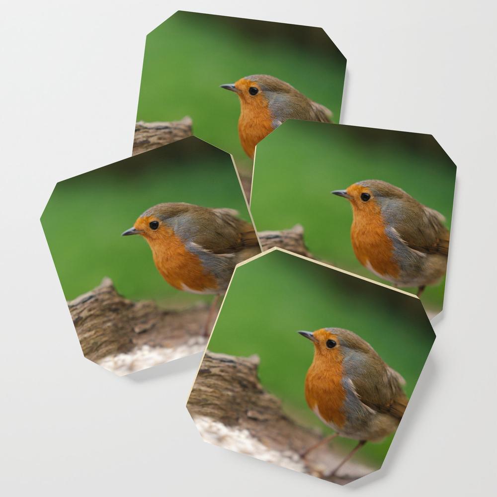 Robin Redbreast Coasters by rawshutterbug (S6C6752435) photo