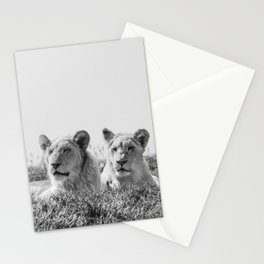 Lion Photography | Cubs | Twins | Love | Animal Stationery Cards