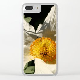 Sitting The Sun Clear iPhone Case