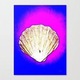 White Shell Canvas Print