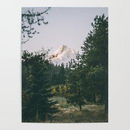 Mount Hood XIV Poster