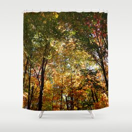 Through the Trees in October Shower Curtain