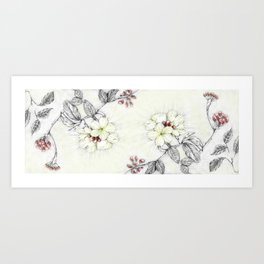 Pequi Flower Art Print