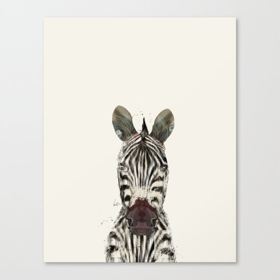 little zebra Canvas Print