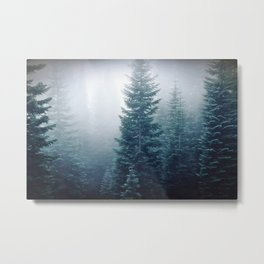 Firs view from Highlights Metal Print