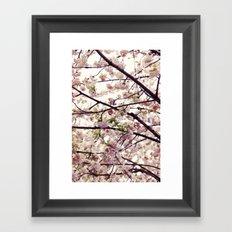 London Bloom Framed Art Print