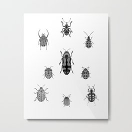Beautiful Bugs White Metal Print