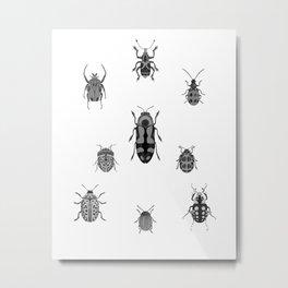 Beautiful Bugs White Metal Print