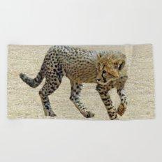 Baby cheetah learning to stalk Beach Towel