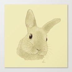 Curious Chris - Drawing Canvas Print