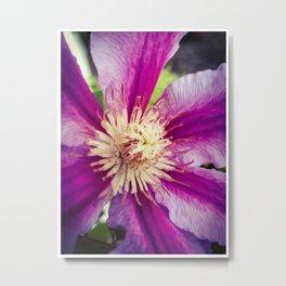 Flower 9 Metal Print