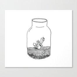 crystal terrarium Canvas Print