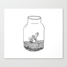 crystal terrarium Canvas Print