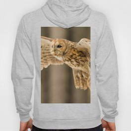 Tawny Owl in Flight Hoody