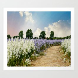 Coloured Landscape Art Print