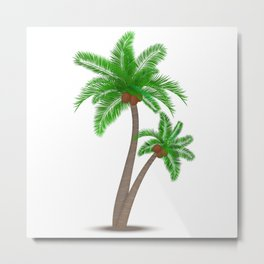 Tropical palm tree with coconuts symbol isolated vector illustration Metal Print