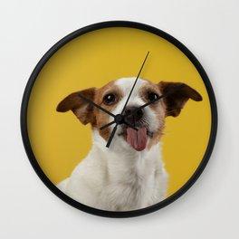 Jack Russell Terrier 7 Wall Clock
