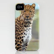 Leopard iPhone (4, 4s) Slim Case