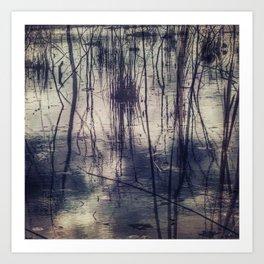 Marsh by Jean-François Dupuis Art Print