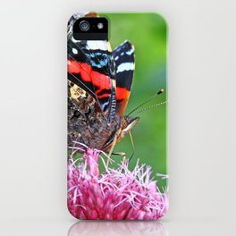 Red Admiral on a flower iPhone Case