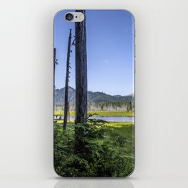 Pillars iPhone Skin