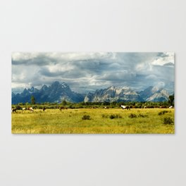 Horses and the Grand Teton Canvas Print