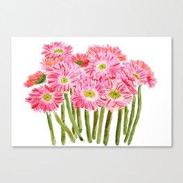 Pink Gerbera Daisy watercolor Canvas Print