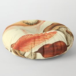 British Edible Fungi Floor Pillow