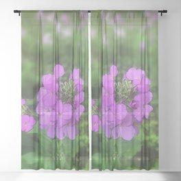 Pink Wildflowers Sheer Curtain